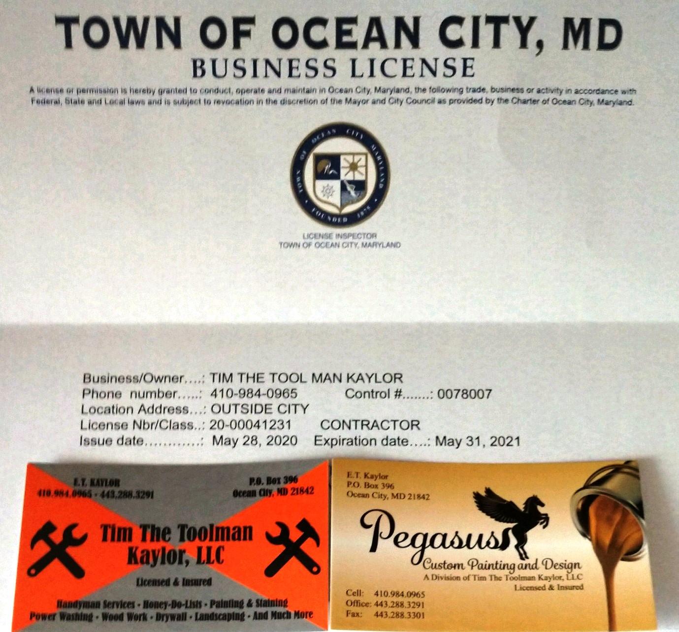 Tim The Toolman Kaylor License
