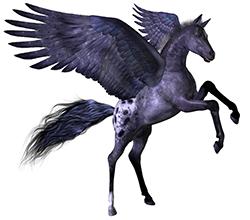Pegasus Custom Painting & Design